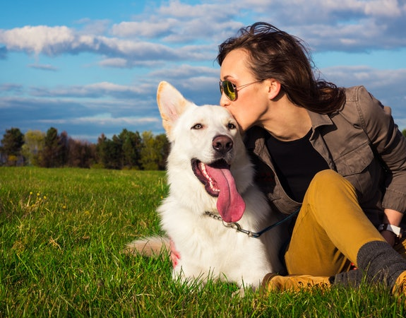 5 Quick Checks to Ensure Your Pet is in Good Health